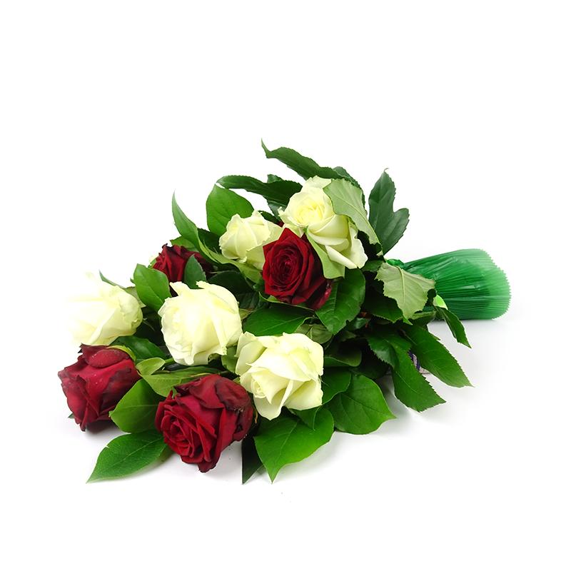 Bēru pušķis ar rozēm Sonāte